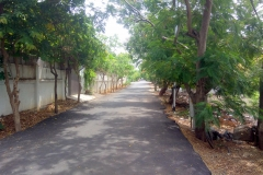 Layout Road in DTCP Approved Residential Layout