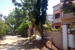 Abutting Road of Residential Plot 2