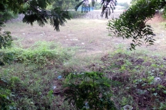 Residential Plot for Sale in Chennai