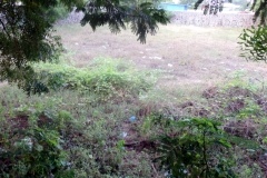 Approved Residential Plot for Sale in Chennai