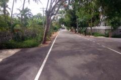 Road in the Approved Sea Cliff Avenue
