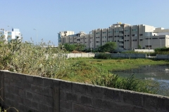 CMDA-Approved-Plot-for-Sale